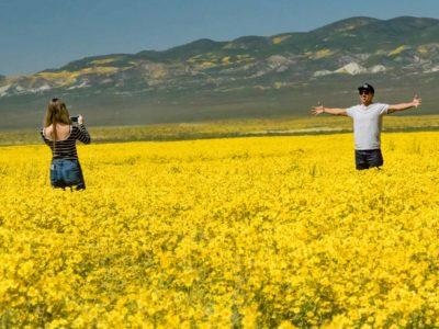 Carizzo Plain Central California